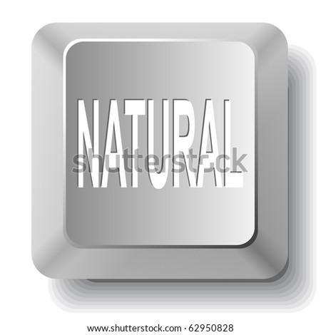Natural. Vector computer key. - stock vector