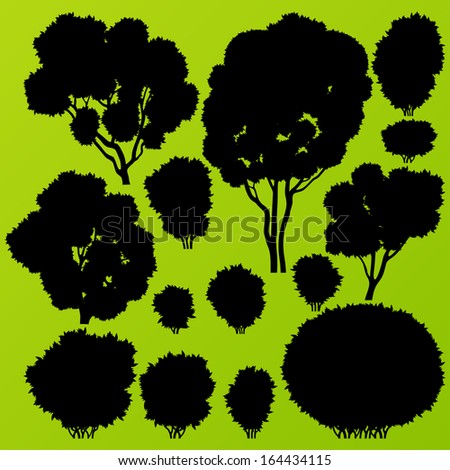 Natural wild bush, tree and scrub plants detailed forest silhouettes illustration collection background vector
