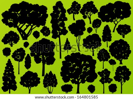 Natural wild tree, bush and scrub plants detailed forest silhouettes illustration collection background vector