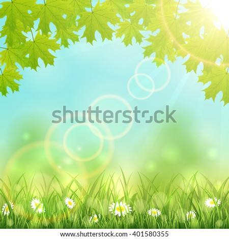 Nature background with flowers in the grass, maple leaves and Sun, illustration. - stock vector