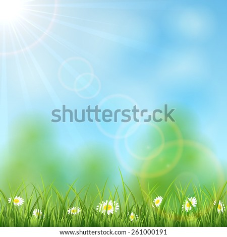 Nature background with Sun and flowers in the grass, illustration. - stock vector