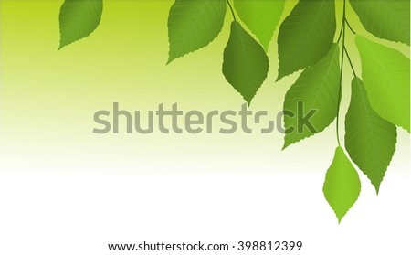 Nature background with tree leaves - stock vector