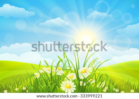 Nature meadow background  with flowers, grass, sky and sun - stock vector