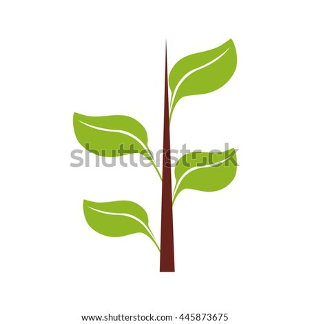 Nature plant concept represented by leaf icon. isolated and flat illustration