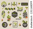 Nature-themed labels and badges with green leaves �¢?? set of vector design elements - stock photo