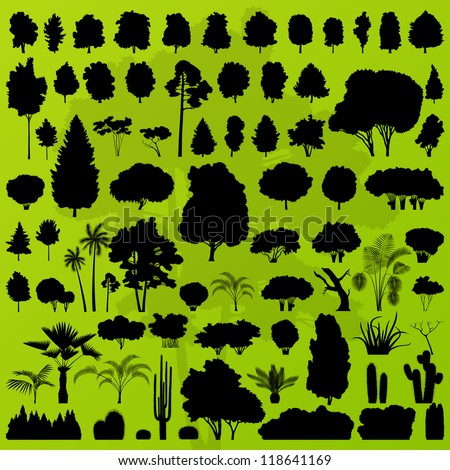 Nature tree, bush, scrub, palm and cactus plants detailed forest silhouettes illustration collection background vector