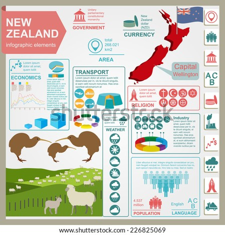 Infographic design nz