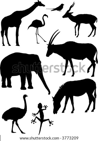 Nine detailed vector silhouettes of various wild animals