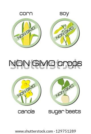 Non GMO crops set of signs for corn, soy, canola, sugar beets - stock vector