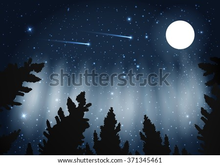 Northern Lights Galaxy Framed Pine Trees Stock Vector 371345461 ...