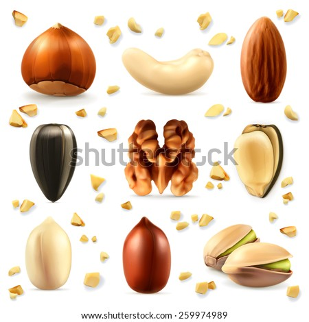 Nuts, vector icon set - stock vector