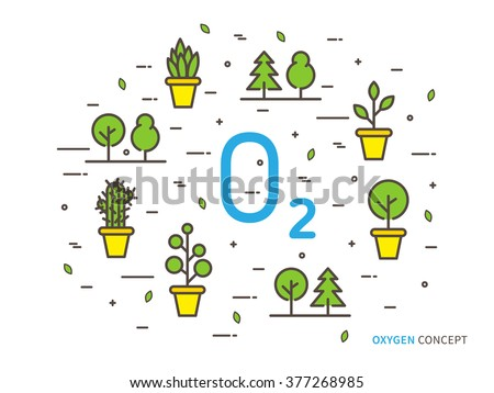 O2 (oxygen) linear vector illustration with house plants. Natural (ecology, ecological) oxygen creative graphic concept. Natural eco oxygen process for science, chemistry, biology.  - stock vector