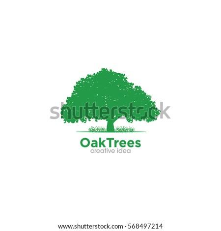 Oak Tree Creative Concept Logo Design Template
