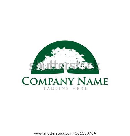 Oak Tree Logo Design Stock Vector 581130784 - Shutterstock