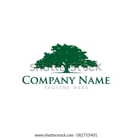 oak tree logo design stock vector royalty free 582755401