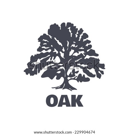 Oak Tree Logo Silhouette Isolated Vector Stock Vector 229904674 ...
