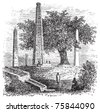 Obelisk of Axum or Rome Stele, in Tigray Region, Ethiopia, during the 1890s, vintage engraving. Old engraved illustration of the Obelisk of Axum. - stock photo