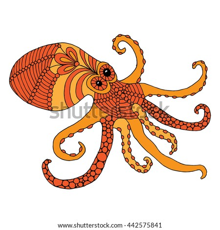 Octopus illustration - (Octopus vulgaris) isolated - stock vector