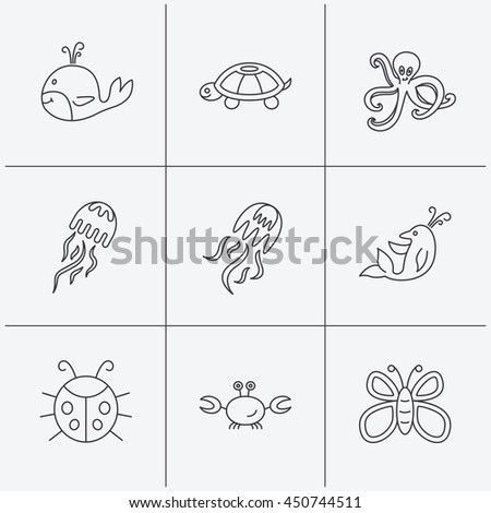 Octopus, turtle and dolphin icons. Jellyfish, whale and ladybug linear signs. Crab, butterfly flat line icons. Linear icons on white background. Vector - stock vector