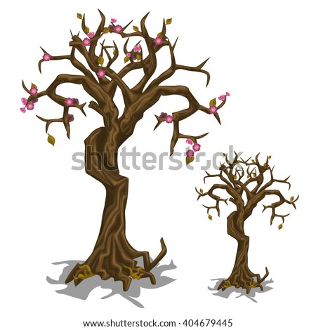 Old cherry tree with a shortage of flowers. Vector illustration. - stock vector