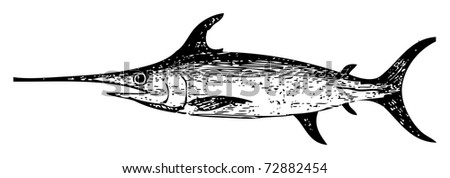 Old engraved illustration of a swordfish, isolated on white. Live traced. From the Trousset encyclopedia, Paris 1886 - 1891. - stock vector