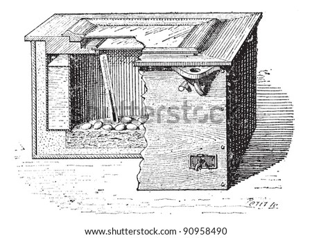 Old engraved illustration of an artificial incubation. Dictionary of words and things - Larive and Fleury - 1895