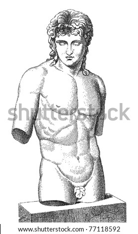 Old torso engraved illustration. Vector. Others in my portfolio. - stock vector