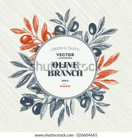 Olive branch. Design template. Vector illustration - stock vector