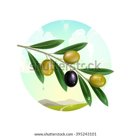 Olive branch, Realistic olive branch, Fresh olive branch, Olive branch 3D, Olive branch background, Green olive label, Olive branch on the background of mountain landscape