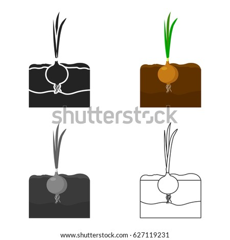 Onion icon cartoon single plant icon stock vector 627119231 onion icon cartoon single plant icon from the big farm garden agriculture cartoon ccuart Images