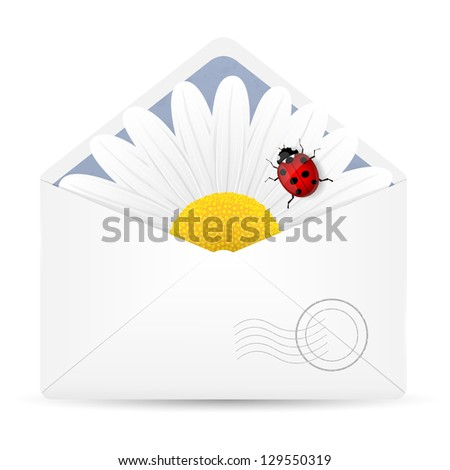 Open envelope with chamomile flower and ladybird. Vector illustration. - stock vector