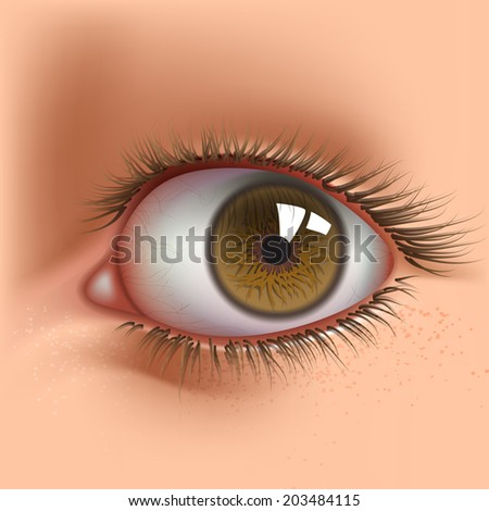 open human eye close up
