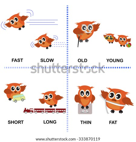 Opposite Word Vector Background For Preschool Fast Slow Old Young Short Long Thin Fat