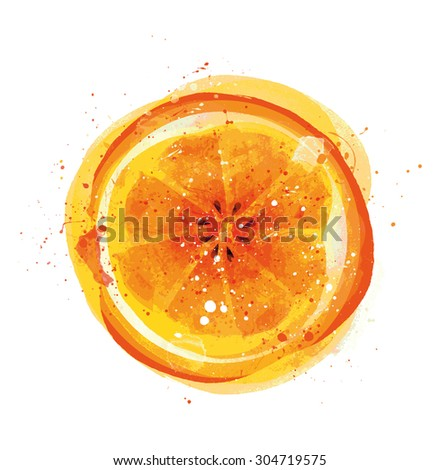Orange Fruit isolated on white background, Vector illustration