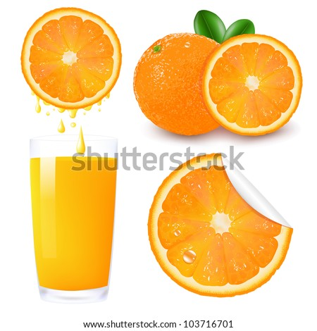 Orange Fruit Set, Isolated On White Background, Vector Illustration - stock vector