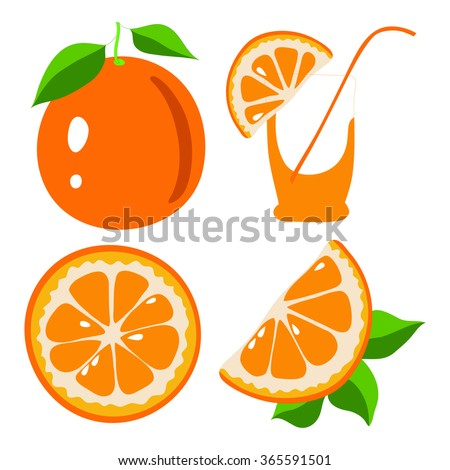 orange fruit slice isolated - stock vector
