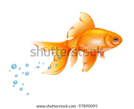 Orange Goldfish with bobbles of air. - stock vector