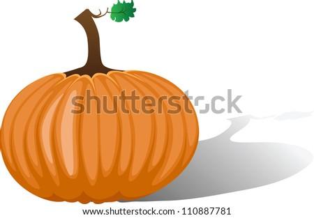 Orange pumpkin isolated, vector illustration - stock vector