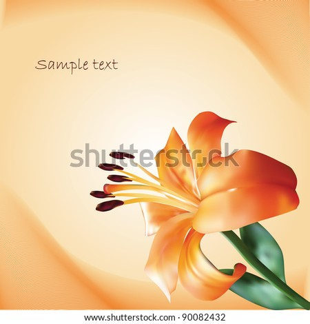 orange vector lilium on abstract background - stock vector