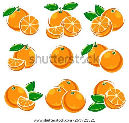 Oranges set. Vector - stock vector