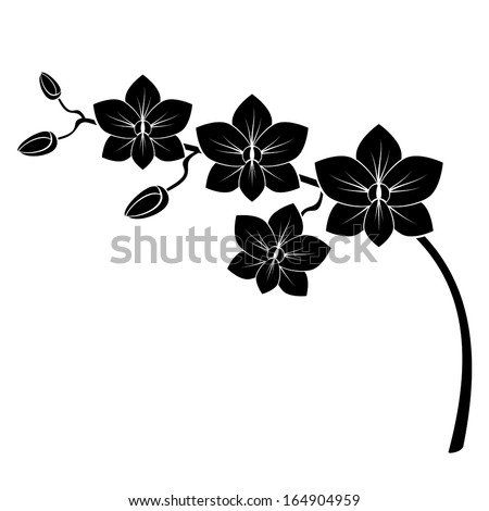 orchid branch silhouette vector for design