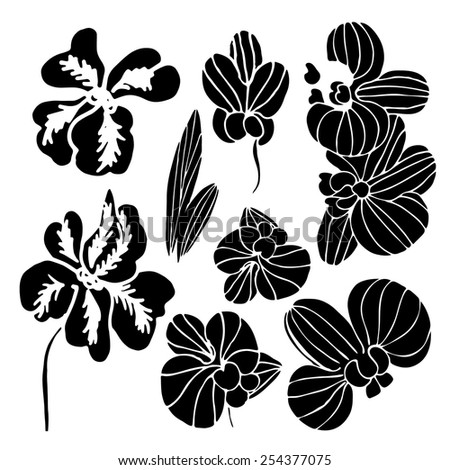 Orchid flower. Black silhouette on a white background. - stock vector