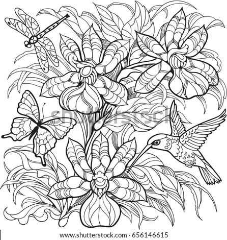 orchid flowers insects and hummingbirdvector coloring page for adult and older children - Hummingbird Coloring Pages