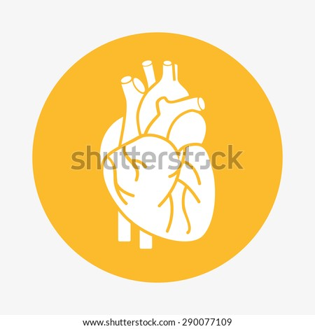 organ human icon design, vector illustration eps10 graphic  - stock vector