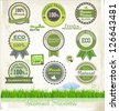 Organic and eco badges and labels - stock vector
