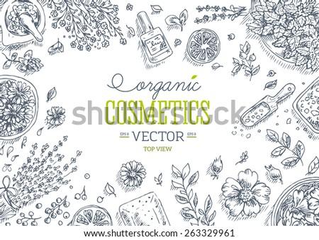 organic cosmetics wholesale