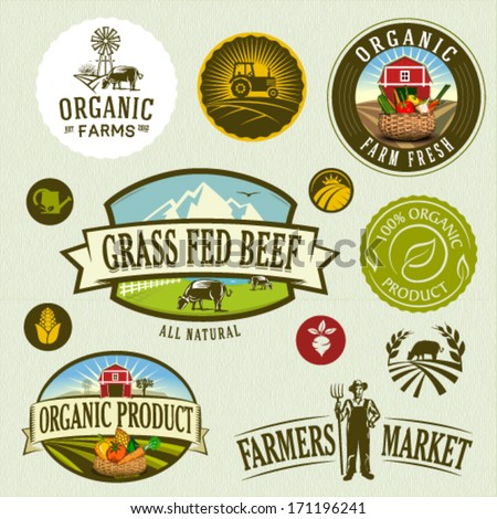 organic & farm-vector labels and elements - stock vector