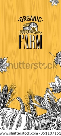 Organic farm with leaves, pumpkin, corn cob, ear wheat on wood background. Vintage vector engraving illustration for logotype, label, poster, presentations. - stock vector