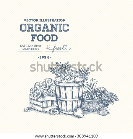Organic food design template. Healthy eating background. Vector illustration - stock vector