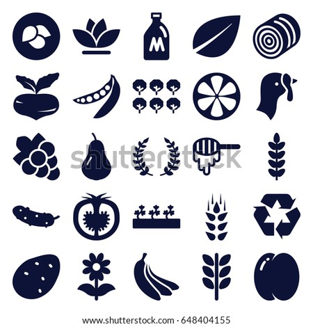 Organic icons set. set of 25 organic filled icons such as wheat, leaf, milk can, turkey, hay, potato, pear, peach, beet, tree, honey, grape, cucumber, flower, sprout plants